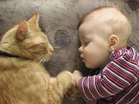 mascotas con niños2