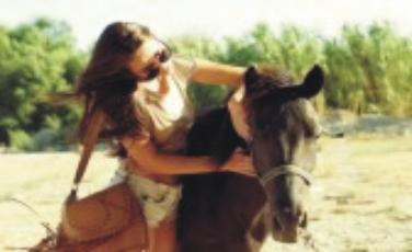 mujer detenida por buscar una caballo para tener sexo